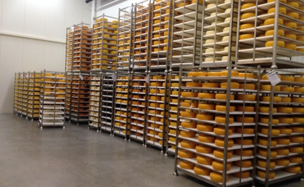 Choose our perforated boards for maturing cheese in secure way