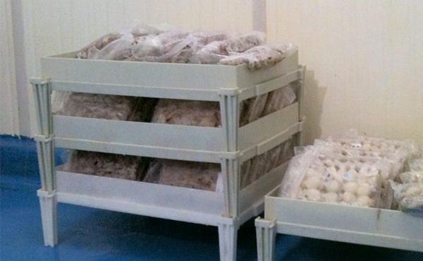 I nostri prodotti per il freddo...