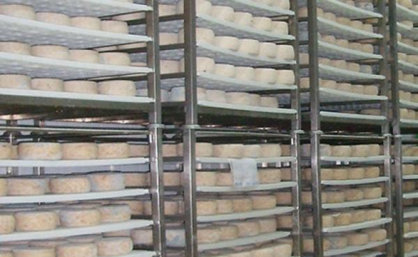 Scaffalature e carrelli: la soluzione giusta per ogni caseificio